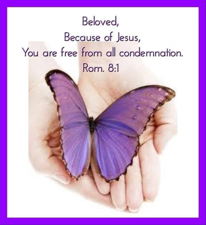 Romans 8:1 (NKJV) 8 There is therefore now no condemnation to those who are in Christ Jesus, who do not walk according to the flesh, but according to the Spirit.