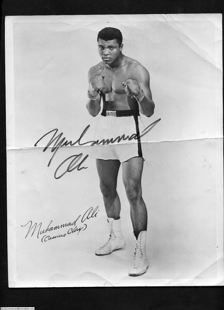 "the sports successes and influence of american boxer cassius clay aka muhammad ali While allysunn experienced great successes,  ""cassius marcellus clay jr, aka muhammad ali,  though he attended an american school,."