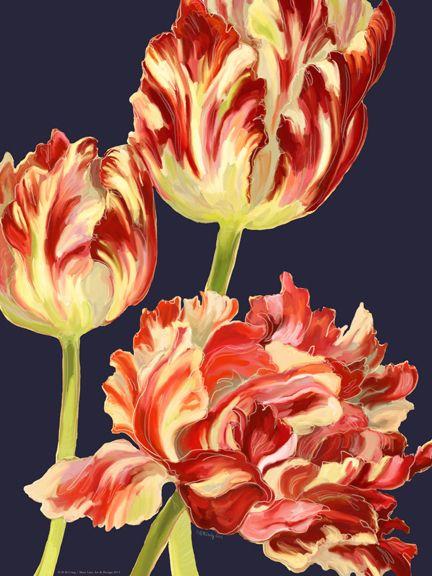 Etude de Tulipe de Fantaisie I Navy