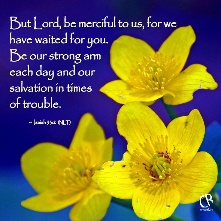 But Lord, be merciful to us, for we have waited for you. Be our strong arm each day and our salvation in times of trouble. - Isaiah 33:2