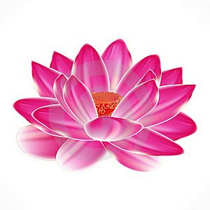 water lily tattos - I would love this as a tattoo. Just like this outlined in the same color, not black