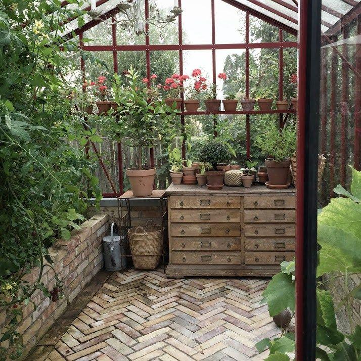 Greenhouse interior.
