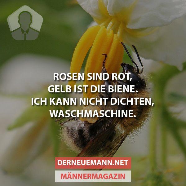 Dichten #derneuemann #humor #lustig #spaß #dichten #natur