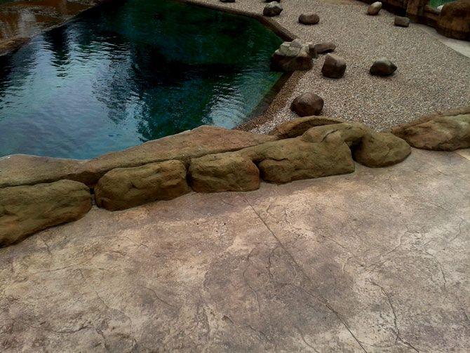 Nawierzchnia betonowa płyta kamienna. Sadzawka gorący klimat