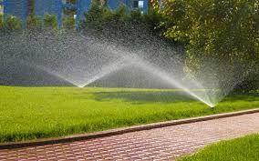 Irrigation repairs Georgetown: Rainbird irrigation system is very popular in Geor...