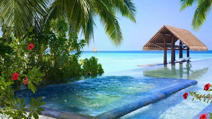 Medence, pálma, hibiszkusz, tengerpart, maldiv-szigetek