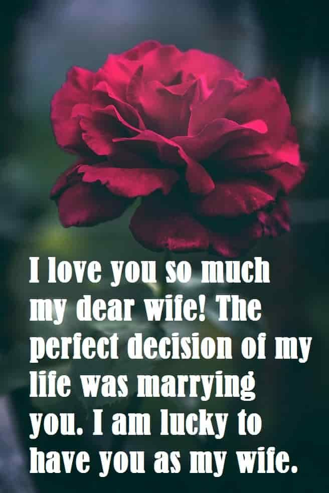 Beautiful Red Flower With Messages For Lovely Wife Love Quotes For Wife Love My Wife Quotes Romantic Quotes For Wife
