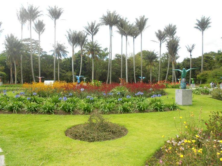 #Bogotaniando más #Quindes en El Jardín de los Quindes del jardín botánico José Celestino Mutis de @Bogotá D.C.