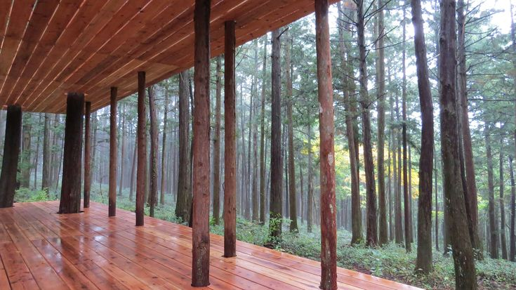 Gallery of In-between, Hinoki + Sugi Pavilion / x-studio – 5
