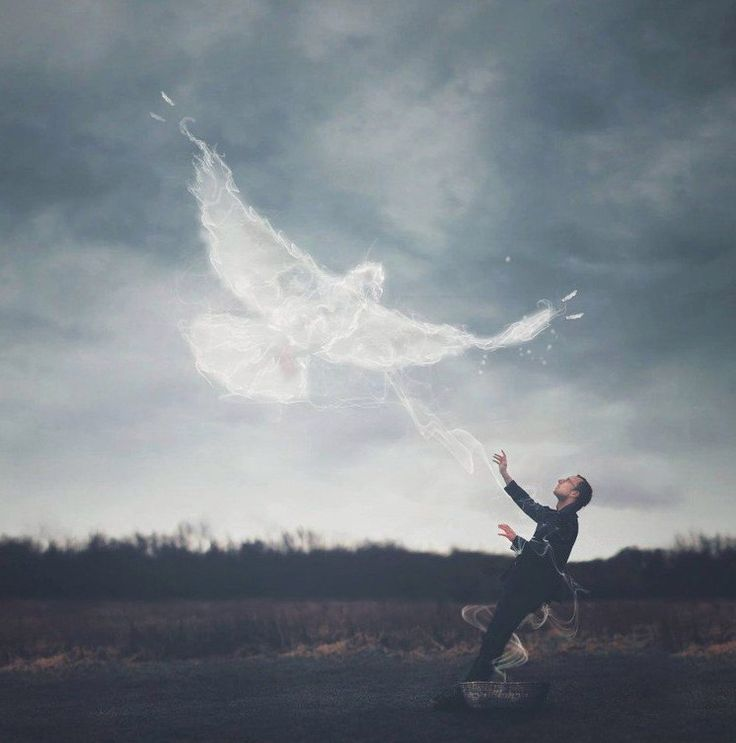 как картинки ангелы упали с небес небольшой