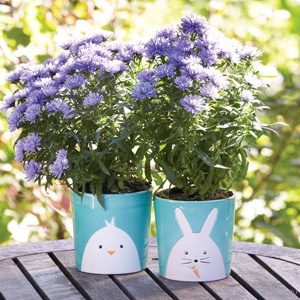 122 best eco friendly easter images on pinterest easter gift 122 best eco friendly easter images on pinterest easter gift eco friendly and holiday fun negle Image collections