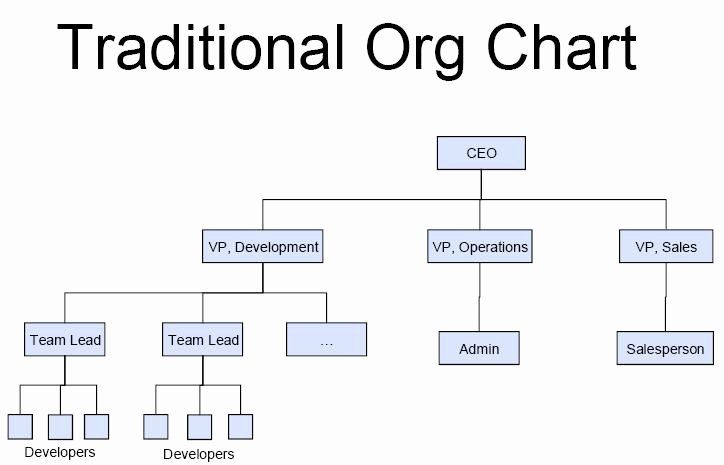 Non Profit Organizational Chart Template Beautiful Best S Of Non Profit Org Chart Examples Typical Non Org Chart Organizational Chart Organization Chart