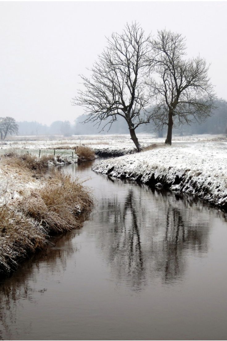 Winter creek, curve, snow, trees, water, reflections, mysterious mist, misty, beauty of Nature, beautiful, peaceful, landscape, photo