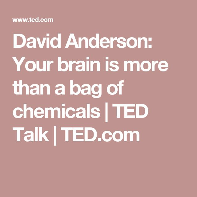 David Anderson: Your brain is more than a bag of chemicals | TED Talk | TED.com