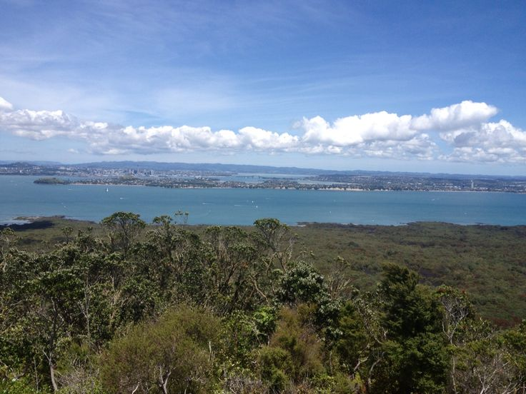 Trapping on Rangitoto Island, NZ