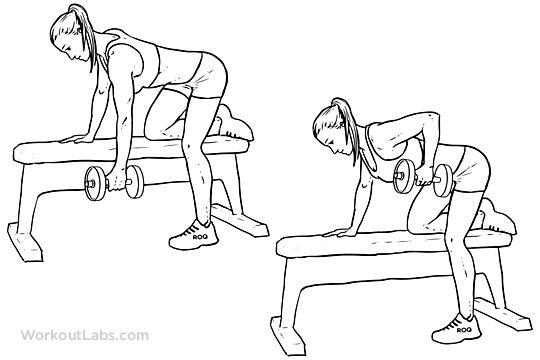 9.) One-Arm Dumbbell Row (15 each arm) 3 sets