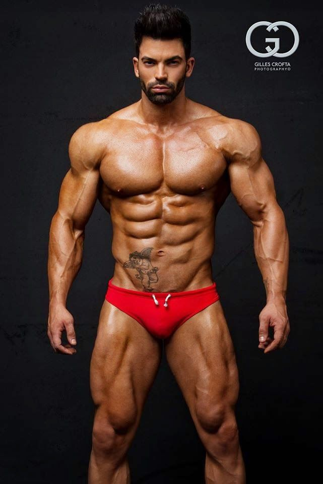 956 best images about Bodybuilding on Pinterest | Arnold