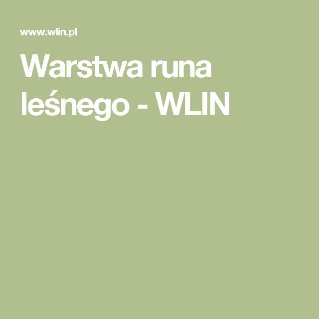 Warstwa runa leśnego - WLIN