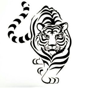 Beautiful Tiger decal