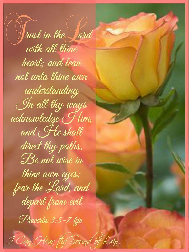 Proverbs 3:5-7 KJV