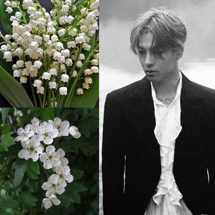 BirthFlower&KPOP // Lily of the Valley & Hawthorn // Taeyang of BigBang