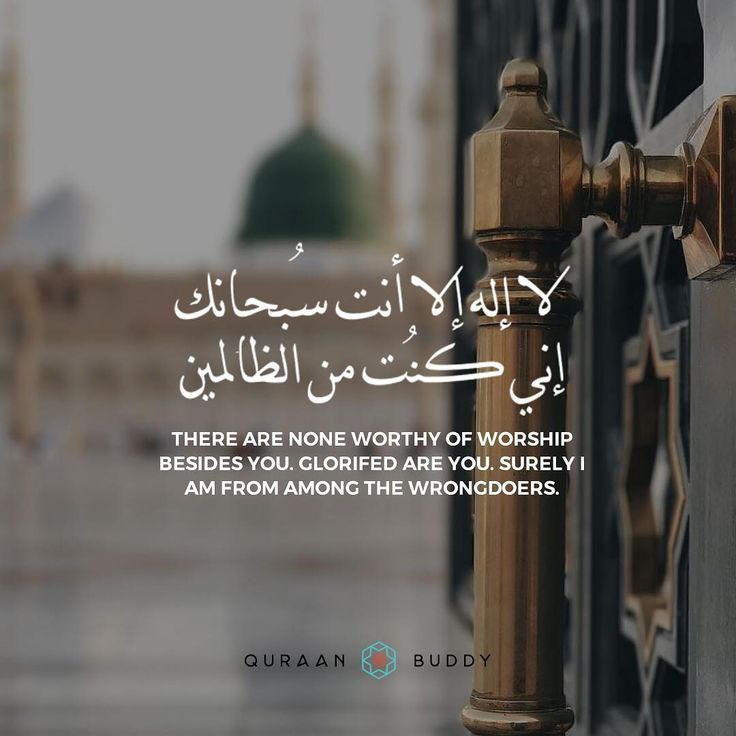 """441 Likes, 7 Comments - Quraan Buddy (@quraanbuddy) on Instagram: """"""""There are none worthy of worship besides You. Glorified are You. Surely I am among the wrongdoers."""""""""""
