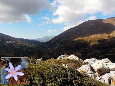 Crete Nature Blog: The Springs of Paraspori (scheduled via http://www.tailwindapp.com?utm_source=pinterest&utm_medium=twpin)