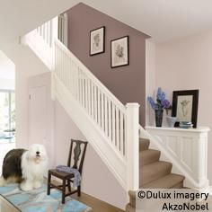 dulux - wall intense truffle and soft stone, woodwork timeless