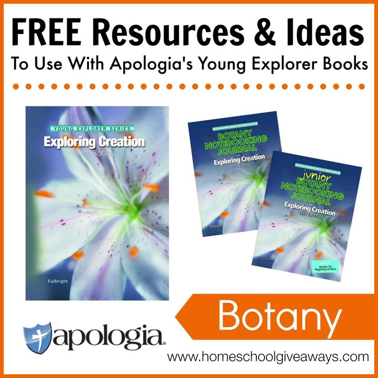 Apologia Flying Creatures free lapbook - hu.pinterest.com