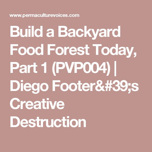 Build a Backyard Food Forest Today, Part 1 (PVP004) | Diego Footer's Creative Destruction