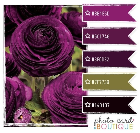 For The Office Color Scheme Black And Olive With Purple