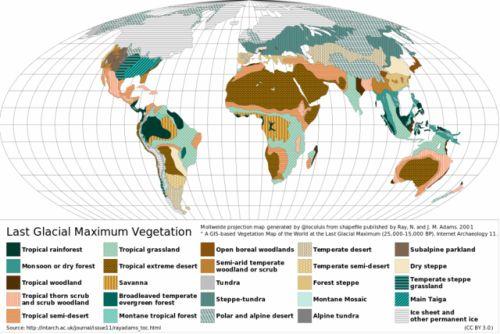 Last Glacial Maximum Vegetation  Quelle: commons.wikimedia.org