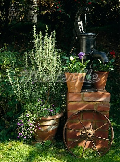 Old reclaimed water pump on brick plinth with herb rosemary and purple violas in terracotta pumps Stock Photos