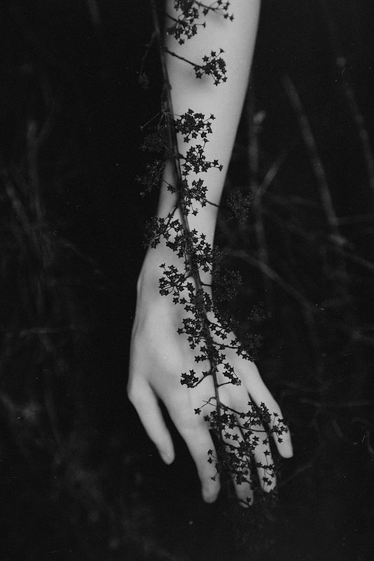 I feel you on my body, give me shelter and show me heart by Anna O. Photography