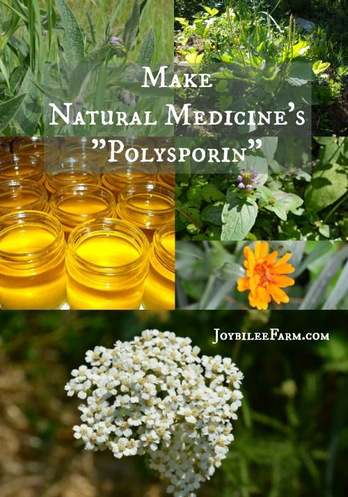 """You can make a simple yet potent herbal ointment that is as effective as the OTC antibiotic ointment for pennies, if you grow your own herbs.  But even if you have to buy the dried herbs, it's still an inexpensive alternative.   It's safe enough for children. Use Natural Medicine's """"Polysporin"""" for scrapes, cuts, bruises, and bites and for the times when kisses just aren't enough."""