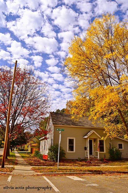 Michigan.USA.Fall.Trees.Clouds. by MammuthPhoto, via Flickr