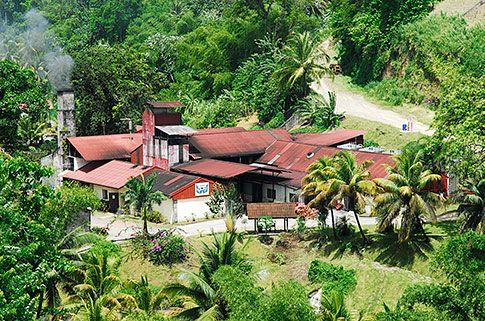 Distillerie JM Crassous en Martinique