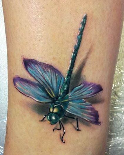 This blue and purple dragonfly looks like it just came in for a landing