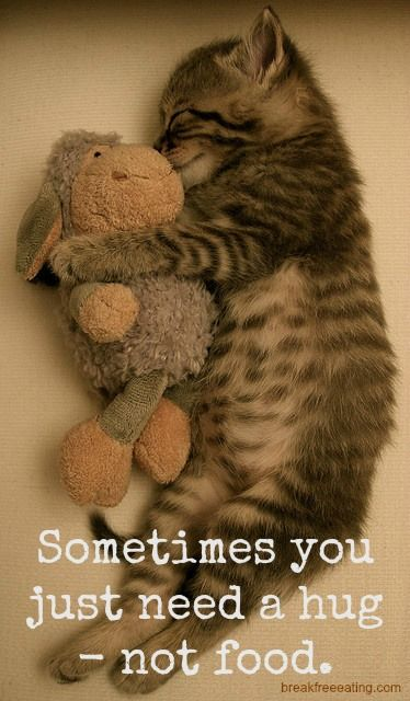 Sometimes you just need a hug...not food.  http://breakfreeeating.com/