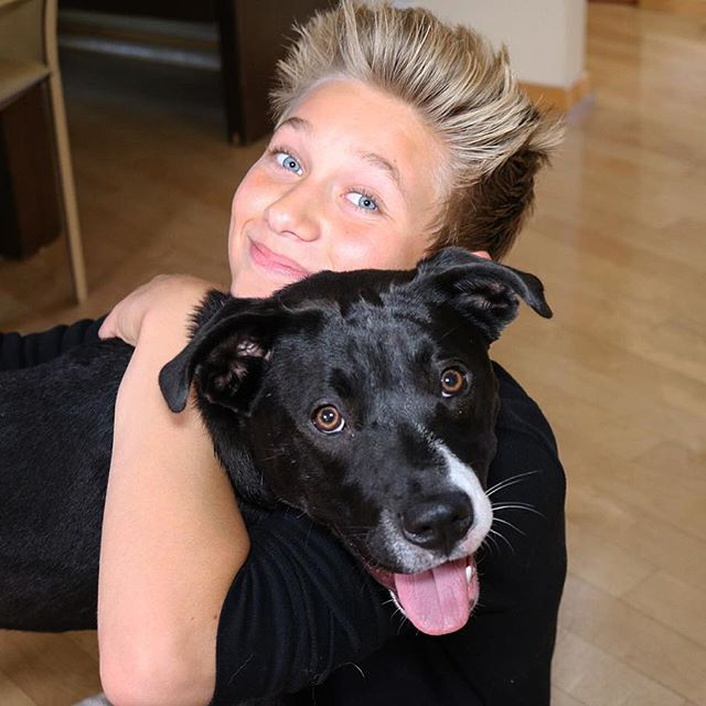 Puppy Love pt.1