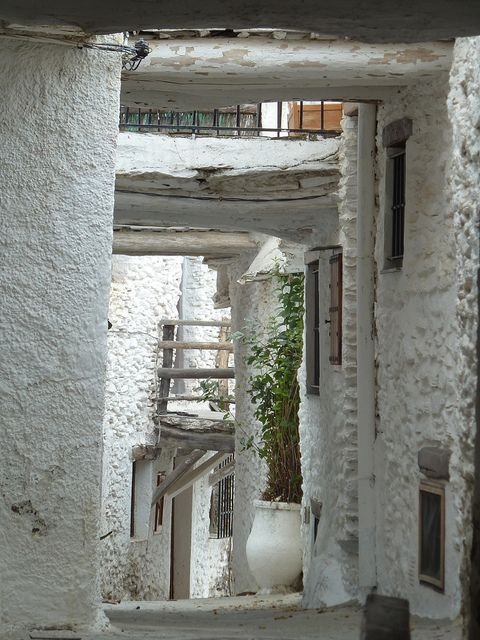 Las Alpujarras: Capileira by Nigel Turner, Granada