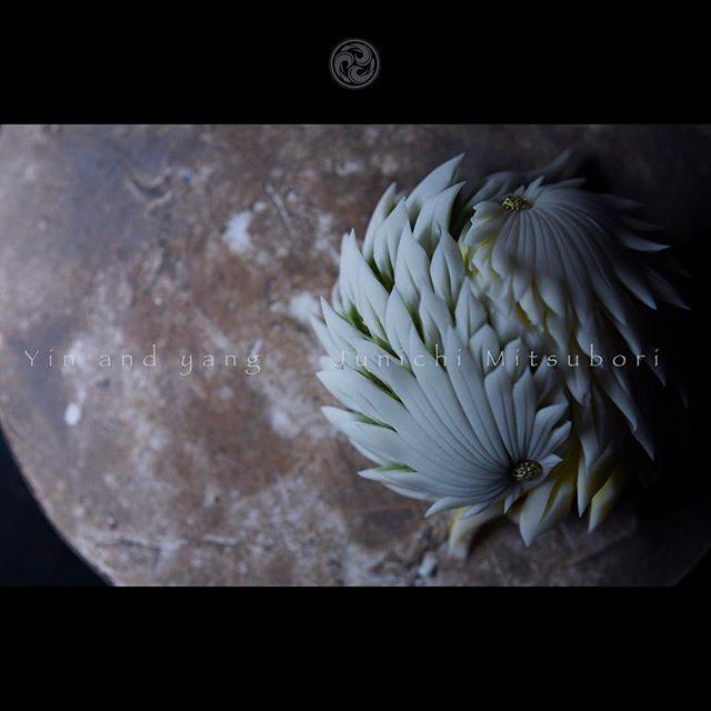 #一日一菓 #菓道 「 #陰陽菊 」 #wagashi of the Day #Yin&Yang #煉切 製 #針切り  本日は陰陽菊です。 また日をまたいでしまいましたので、 本日も連投失礼致します。  #JunichiMitsubori #和菓子 #一菓流 #ART #アート #dope