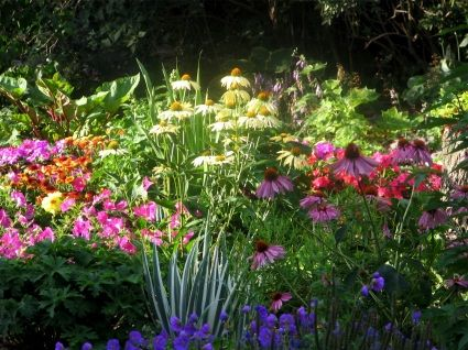 a perennial flower bed with plants that bloom in each of the different months of the spring, summer, and fall, so there are always blossoms to admire