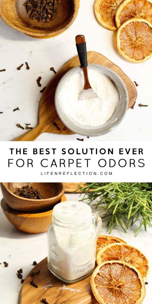 Best 25+ Smelly carpet ideas on Pinterest   Pet odor ...