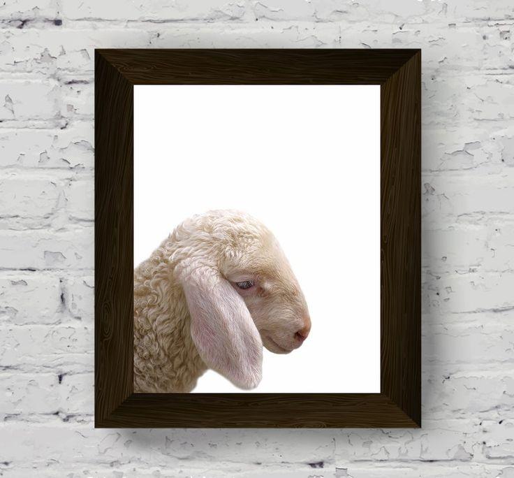 sheep print, farm animal print for nursery, baby room wall art prints, farmhouse poster, printable artwork, instant digital download di AlemiPrints su Etsy