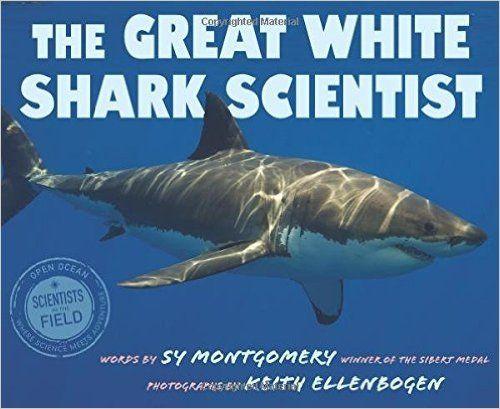 The 25 Best Great White Shark Habitat Ideas On Pinterest