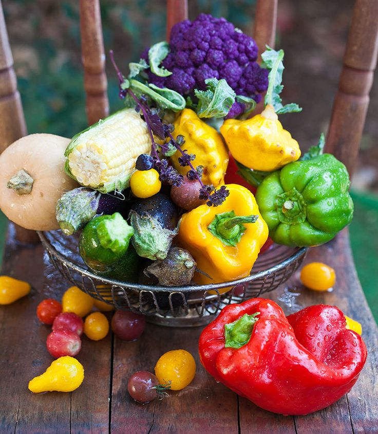 What Are Heirloom Vegetables & Why Should I Grow Them? – Hobby Farms  – Gardening