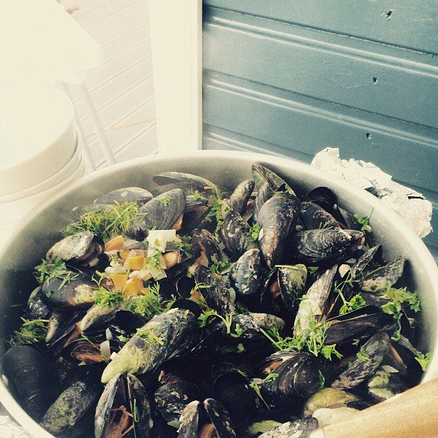 Nyder i sommeren derude? ☀️ foodie Mette sender en smuk sommerhilsen fra Lyby Strand, hvor hun nyder en lækker omgang hjemmeplukkede muslinger ⚓️ #foodfestival15 #aarhus #madhyldest #muslinger #sol #sommer #strand