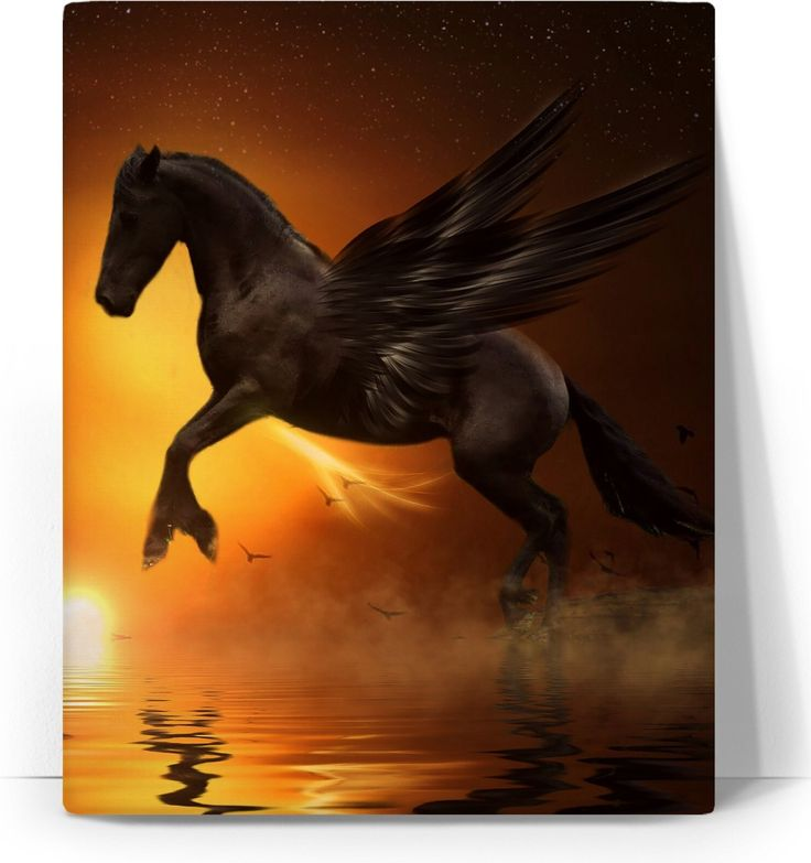 Check out my new product https://www.rageon.com/products/pegasus-and-sunset-art-canvas-print?aff=BWeX on RageOn!