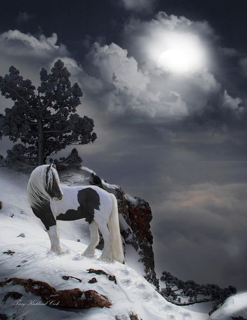Paint, Pinto Horse, Gypsy Vanner, standing on a snowy mountain cliff under the moon. Gorgeous glowing moonlight casting cool beautiful shadows.